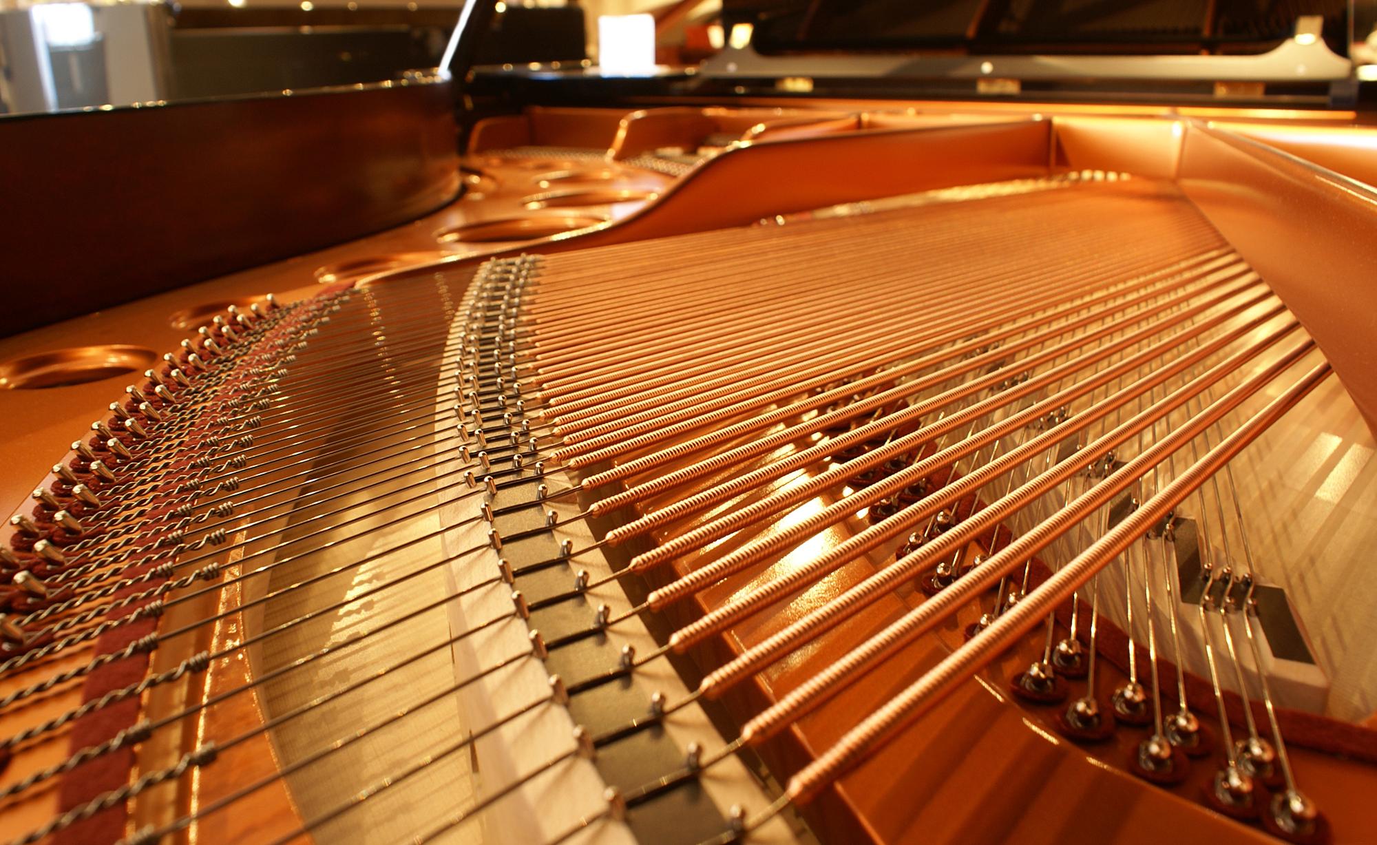 Bondi's Piano Service